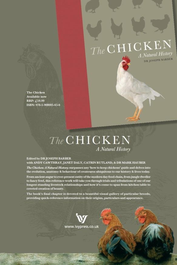Boost Near Me >> Breed briefs!   ChickenStreet